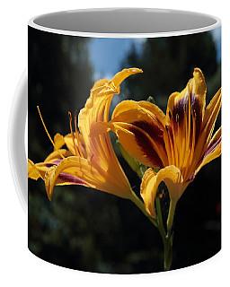 Hemerocallis Coffee Mug