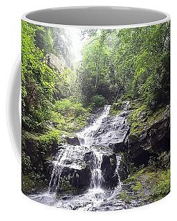 Hen Wallow Falls Great Smoky Mountains National Park Coffee Mug