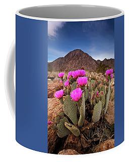 Henderson Canyon Beavertail Coffee Mug