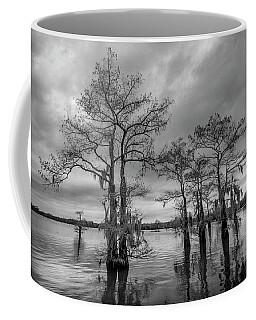 Henderson Swamp Wetplate Coffee Mug