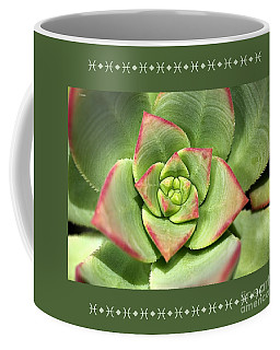 Hens And Chicks Succulent And Design Coffee Mug