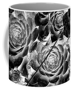 Hens And Chicks - Vintage Black And White Coffee Mug by Janine Riley