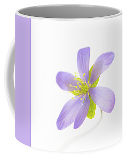 Hepatica On White Coffee Mug