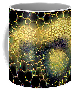 Hepatica, Polarized Lm Coffee Mug