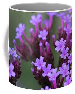 Herb Robert Quiet Beauty. Coffee Mug