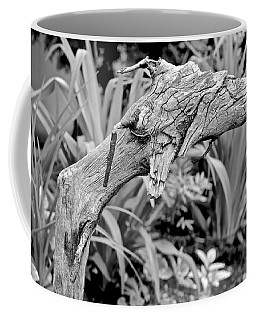 Here There Be Dragons Coffee Mug