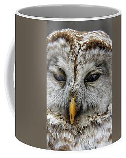 Here's Lookin At You Coffee Mug by Davandra Cribbie