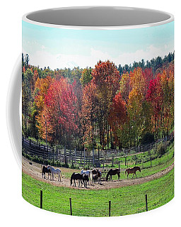 Heritage Farm In Easthampton, Ma Coffee Mug