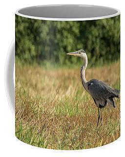 Heron In The Field Coffee Mug