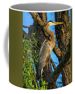 Heron In The Pine Tree Coffee Mug