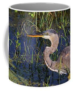 Heron Macro Coffee Mug