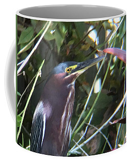 Heron With Yellow Eyes Coffee Mug by Val Oconnor