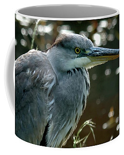 Herons Looking At You Kid Coffee Mug