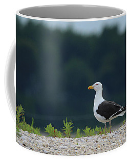Herring Gull Port Jefferson New York Coffee Mug