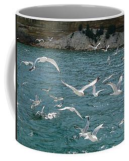 Herring Gulls At Pictured Rocks Coffee Mug