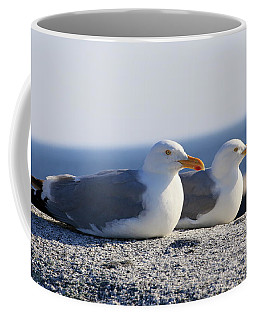Herring Gulls, Nova Scotia Coffee Mug