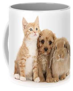 Hey, Move Over, You're Upstaging Me Coffee Mug