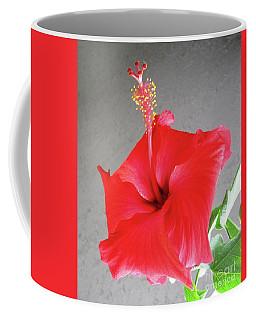 Hibiscus #2 Coffee Mug
