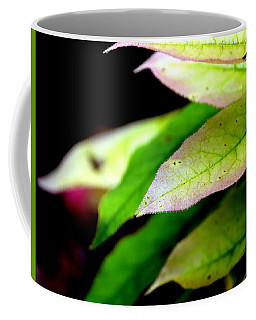 Hickory Leaf Coffee Mug