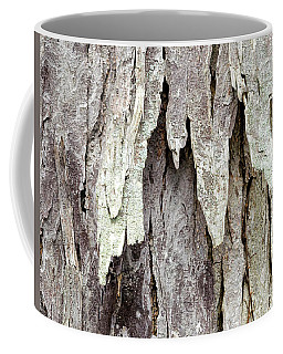 Coffee Mug featuring the photograph Hickory Tree Bark Abstract by Christina Rollo