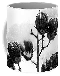 Hickory Tree In Winter Coffee Mug