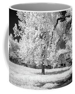 Hidden Barn Coffee Mug by James Barber