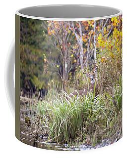Hidden Buck Coffee Mug