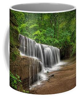 Hidden Falls  Coffee Mug by Rikk Flohr