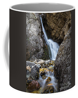 Hidden Falls Coffee Mug