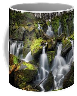 Hidden Mossy Falls Coffee Mug