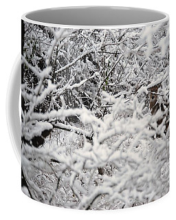 Coffee Mug featuring the photograph Hidden Treasure by Eric Liller