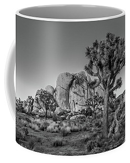 Hidden Valley Rock Coffee Mug