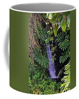 Small Hidden Waterfall  Coffee Mug