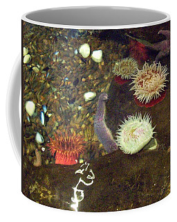 Hidden Writings Coffee Mug