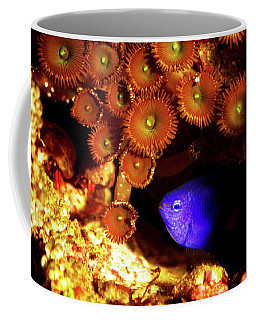 Coffee Mug featuring the photograph Hiding Damsel by Anthony Jones