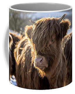 Highland Baby Coo Coffee Mug