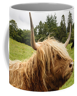 Highland Coo Coffee Mug