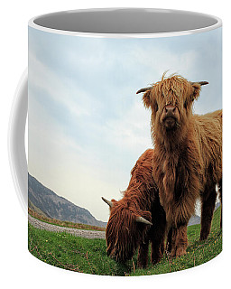 Highland Cow Calves Coffee Mug