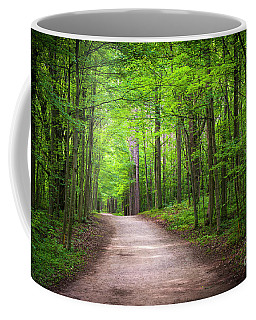 Hiking Trail In Green Forest Coffee Mug