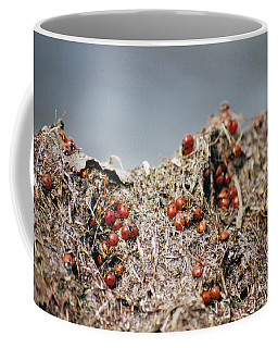 Hill Climbing Games Coffee Mug
