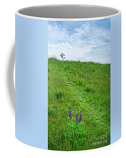 Hill Top, Portland, Maine #30525 Coffee Mug