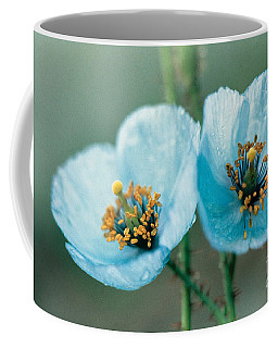 Himalayan Blue Poppy Coffee Mug