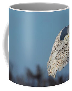 Hindsight Coffee Mug