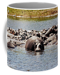 Hippo's Coffee Mug
