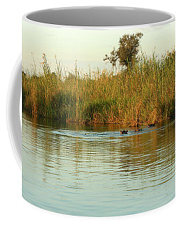 Hippos, South Africa Coffee Mug