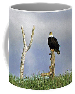 Coffee Mug featuring the photograph His Majesty by Pamela Patch