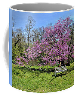 Historic Walnford Coffee Mug