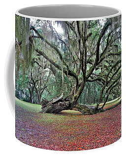 Hofwyl-broadfield Plantation2 Coffee Mug