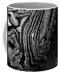 Hog Fish Float Three Coffee Mug by Expressionistart studio Priscilla Batzell
