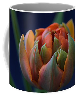 Hold Tight The Rainbow Coffee Mug